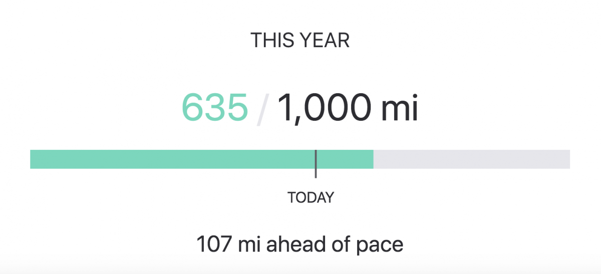 A bar graph showing that at the time of this post, Angela had run 635 of her target 1000 miles, and was 107 miles ahead of pace.